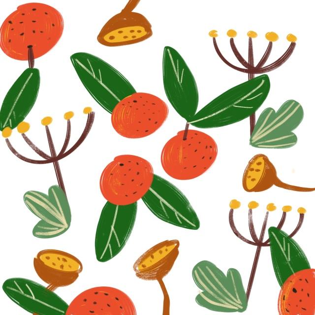 clementine pattern